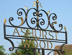 cropped-240px-ashurst_wood_signpost1.jpg